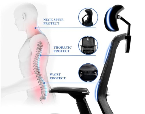 spine protection ergonomic office chair diagram