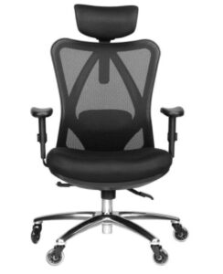 Duramont Ergonomic Office Chair with Lumbar Support