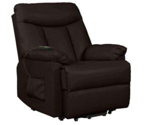 Domesis Renu Leather Power Lift Chair Recliner, Brown